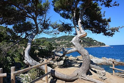bijzondere kustwandelingen Camino de Ronda