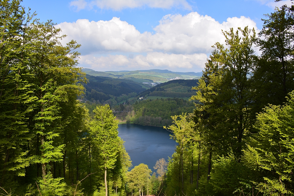 Wandelvakantie in Duitsland; de Eifelsteig, Gemundenmaar