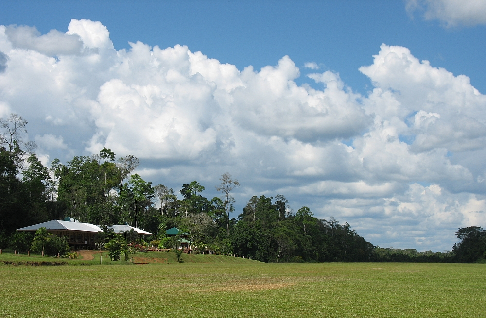 Kabalebo Amazone Suriname