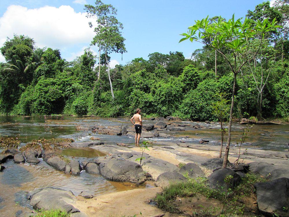 amazone in Suriname bij Kabalebo resort