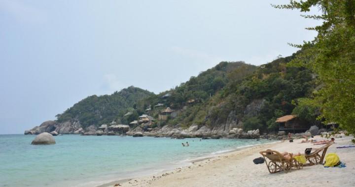 Snorkelen tussen de blacktip reef sharks, op Koh Tao is het mogelijk!