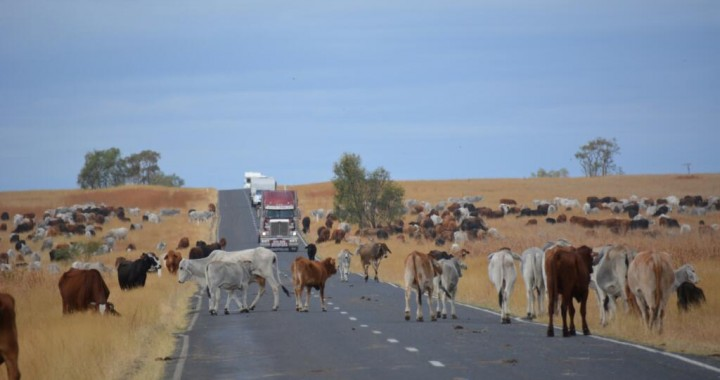Great Inland Way Australië