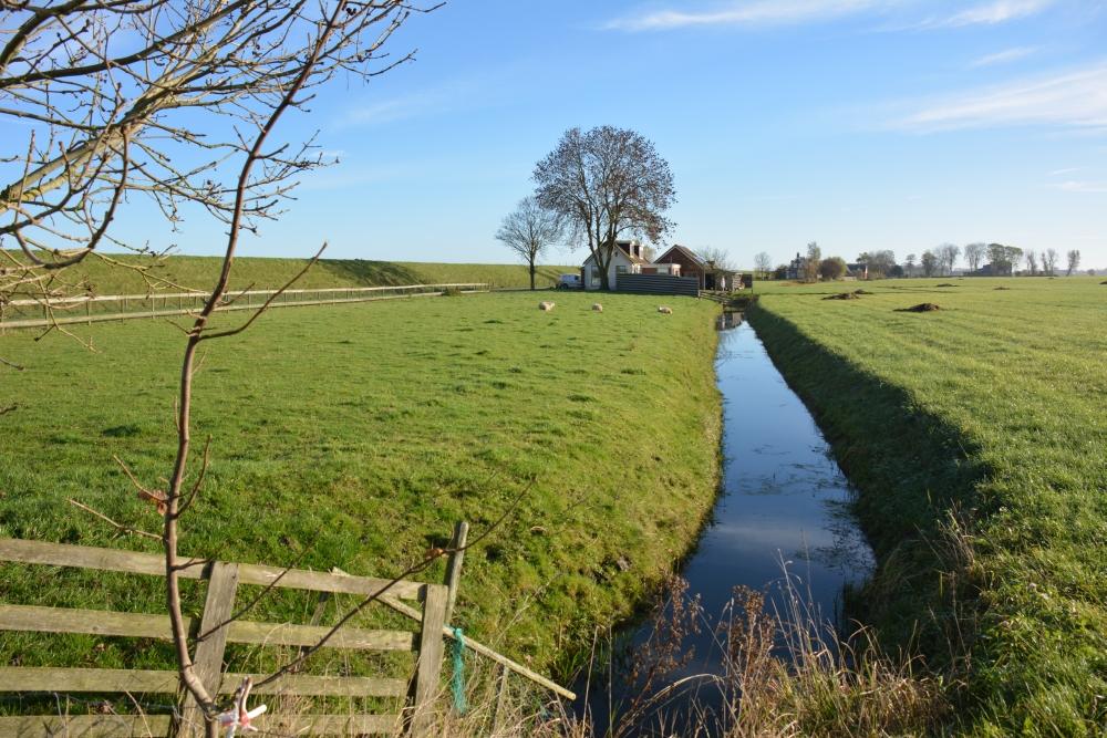 fietsen in Friesland9