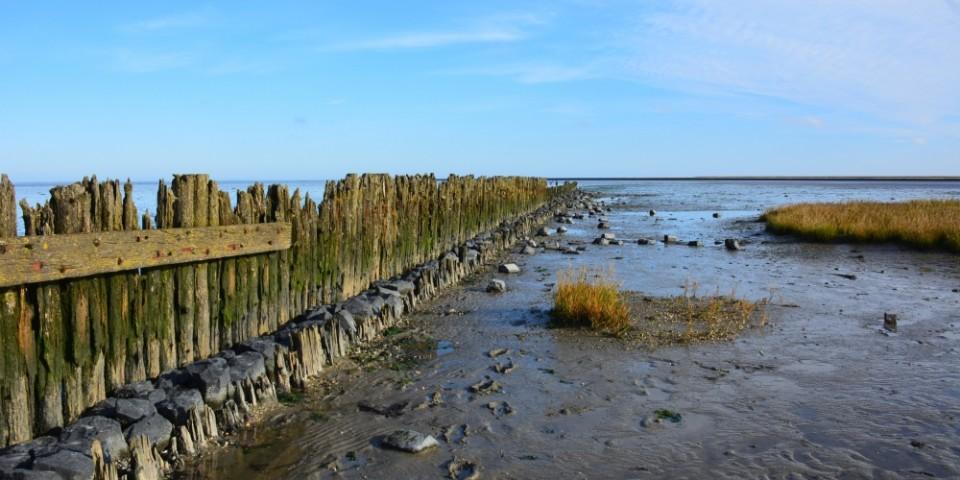 Waddenkust bij Moddergat Friesland