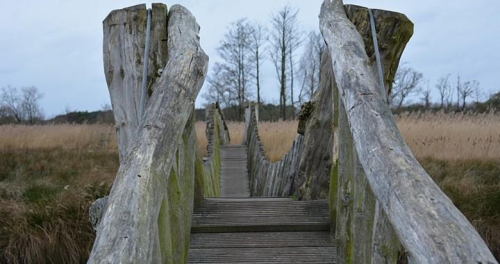 Wandelen in Brabant de Plateaux en het Hageven