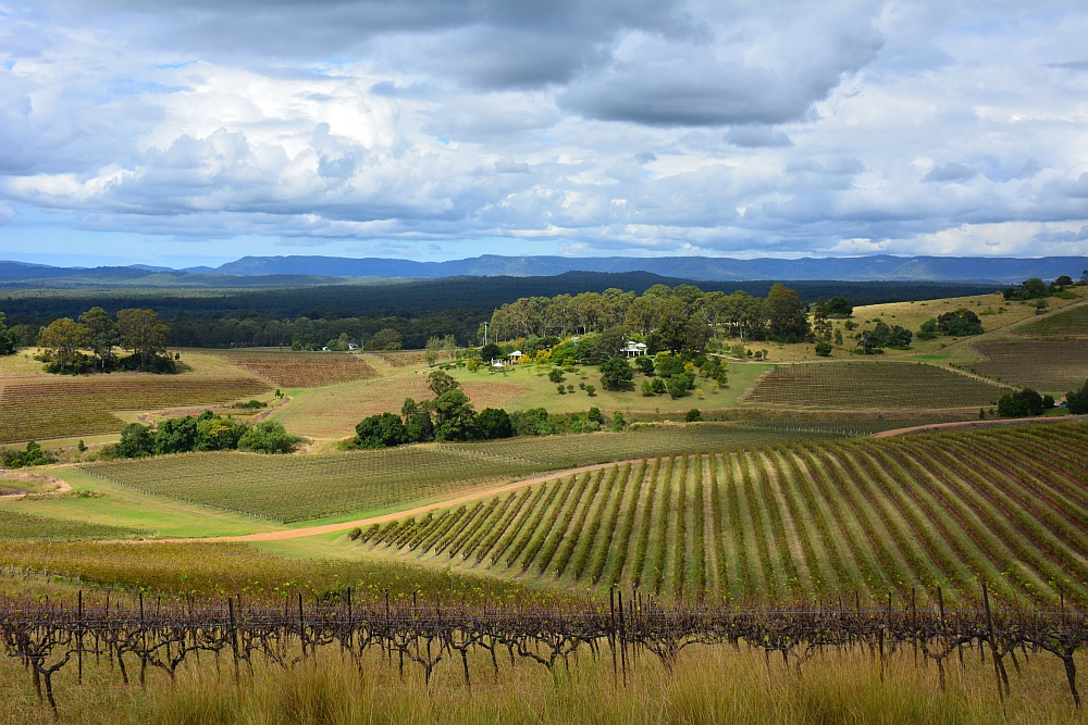 Hunter Valley, route van Sydney naar Brisbane