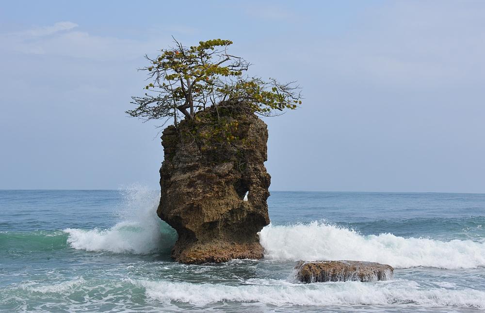nationale parken van Costa Rica Gandoca Manzanillol