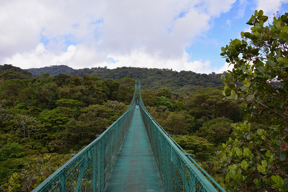 Monte Verde skywalk backpacken Costa Rica