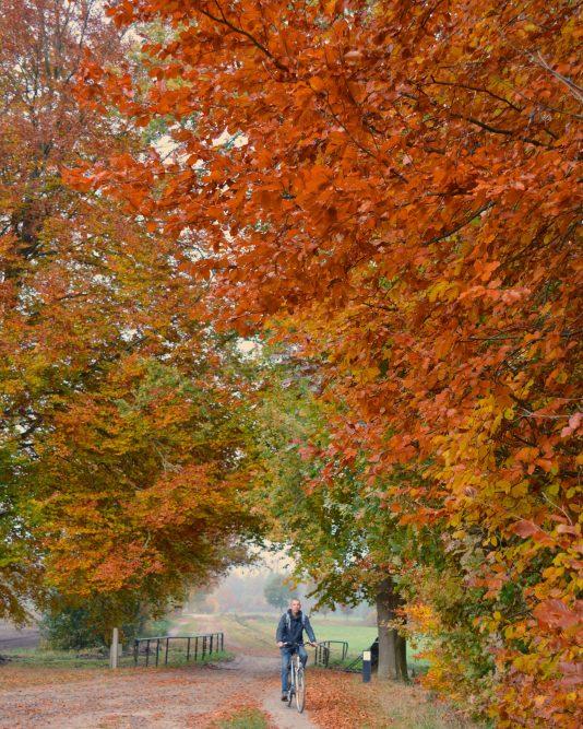 herfst vakantie Drenthe