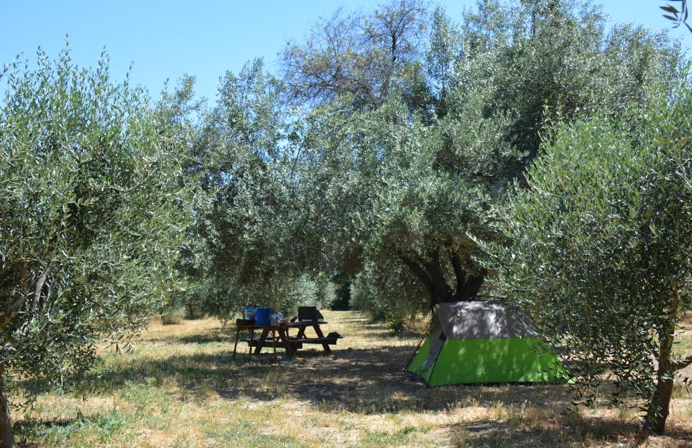 kamperen13