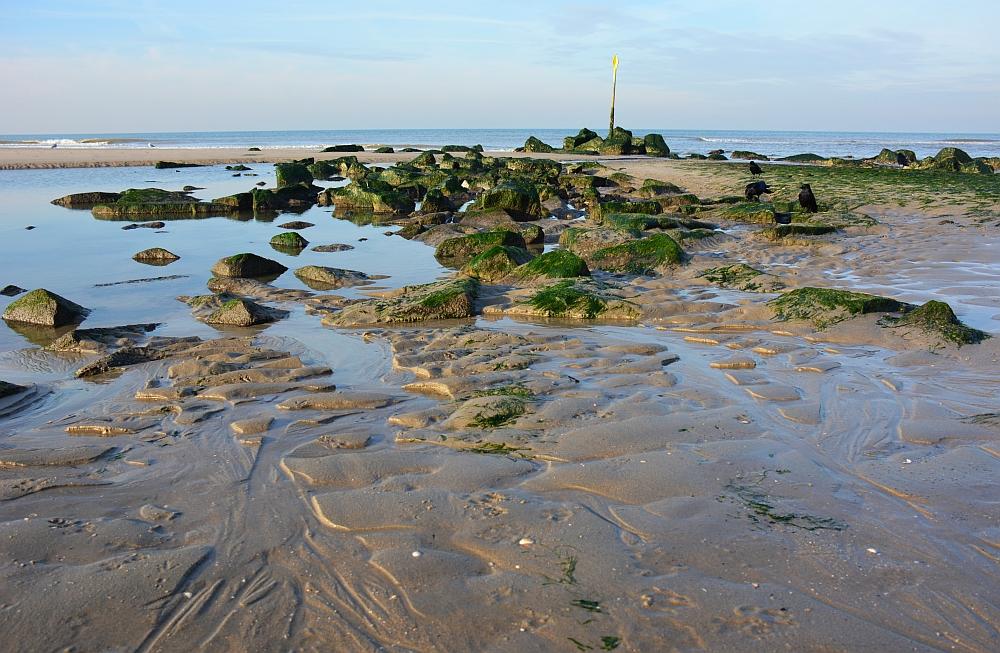 wandelen door de duinen bij Den Haag strand Kijkduin