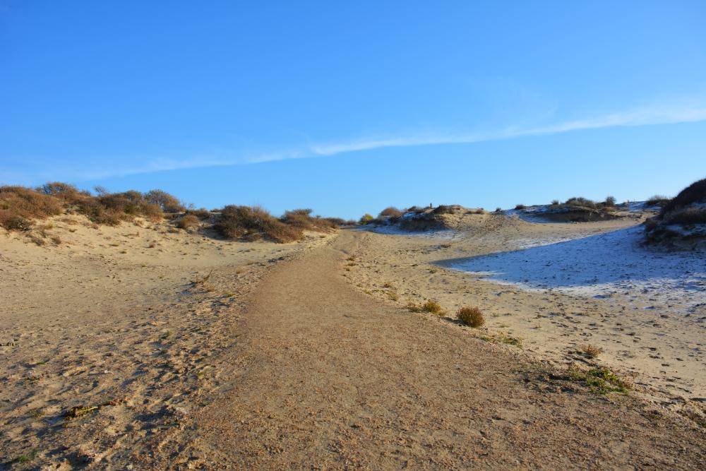 wandelen door de duinen bij Den Haag Kijkduin