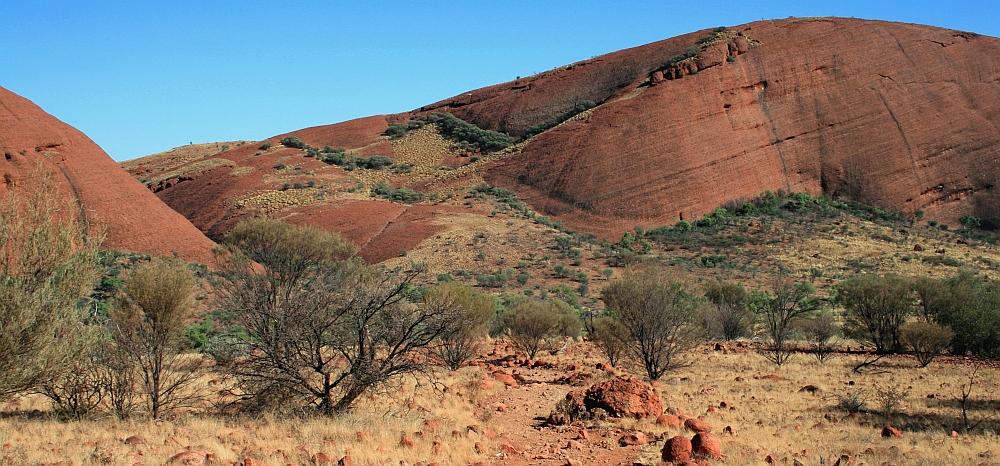 olgas roadtrip Red Centre en de Outback van Australië