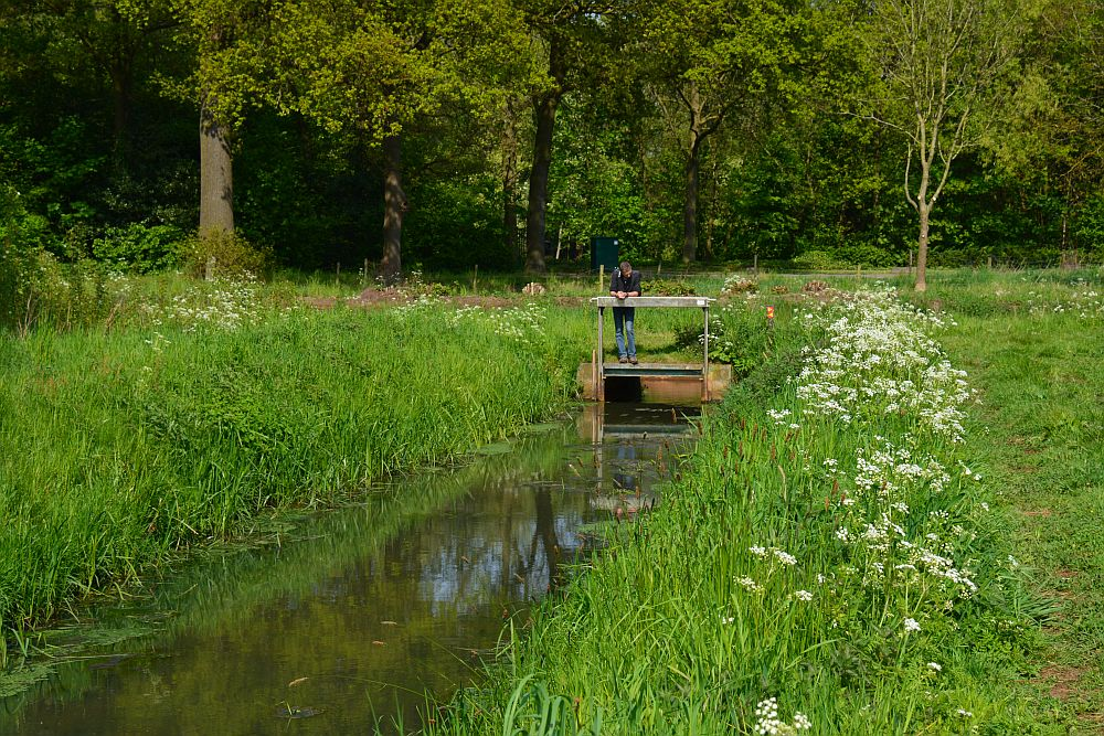 Poelentocht Sevenum, wandelen in Limburg