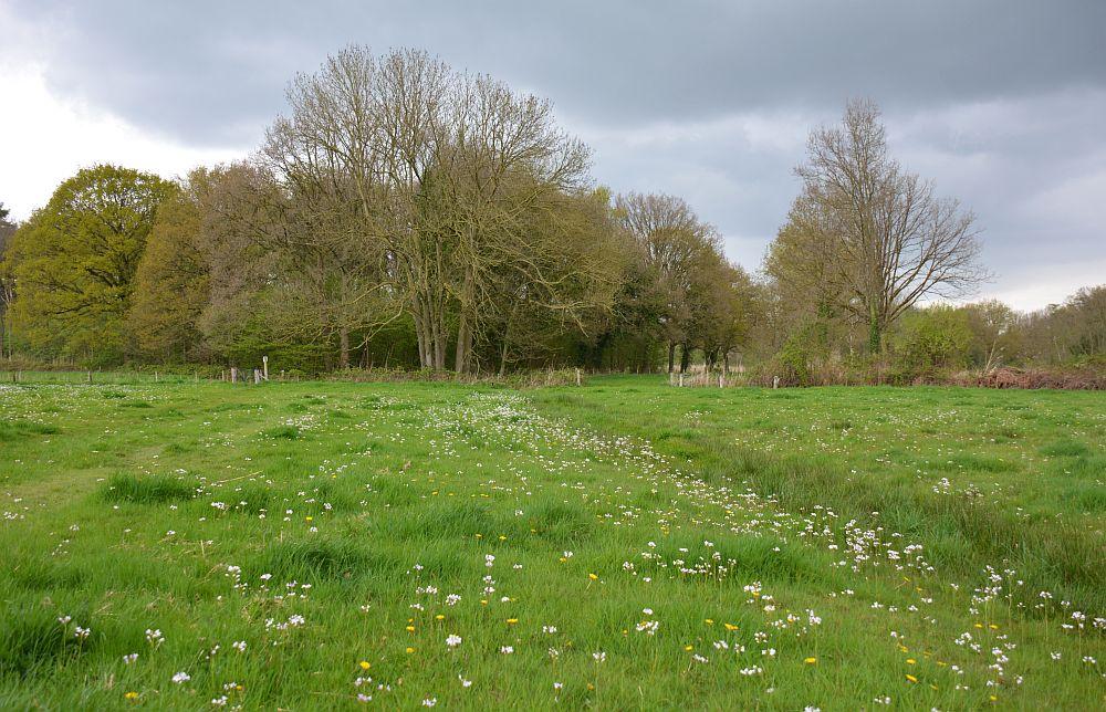 de Mortelen, wandelen in Brabant