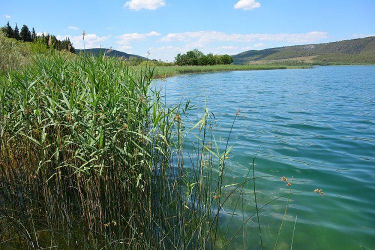 zwemmen Krka nationaal park Kroatië