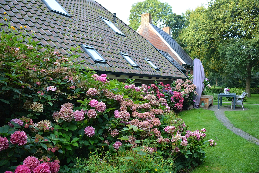 Bed and Breakfast Noordermeer Friesland