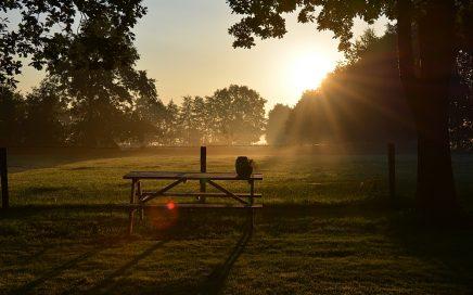 zonsopgang Friesland, Friese Wouden