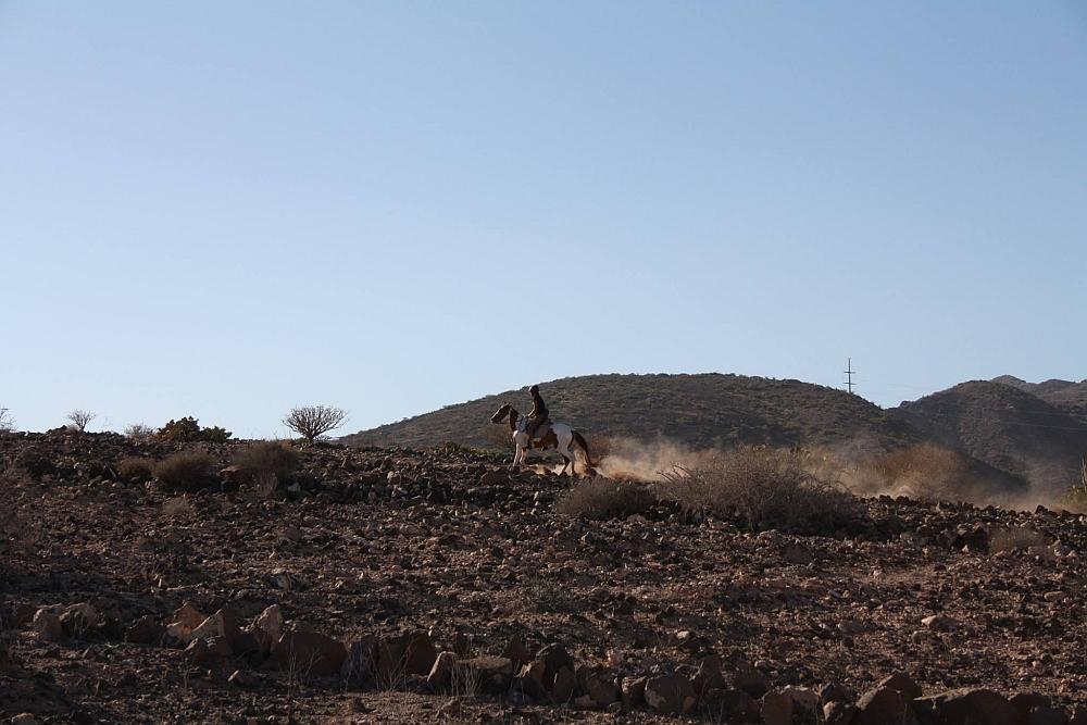 Gran Canaria paardrijden