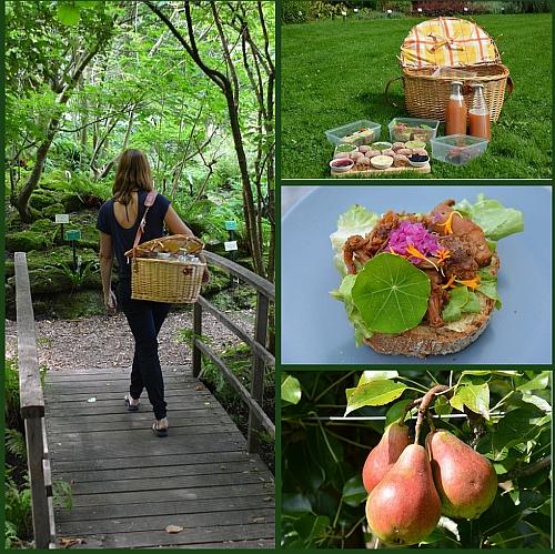 botanische tuin De Kruidhof in Buitenpost Friesland