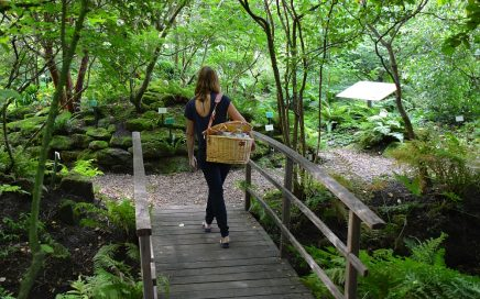 Botanische tuin De kruidhof