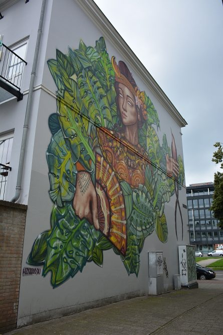 Street Art Jan Dommeringpad
