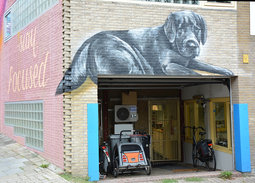Street Art Arnhem