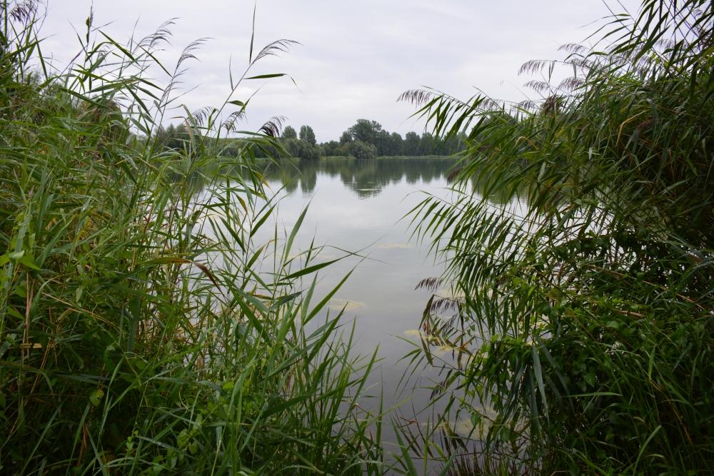 Slingeplas Winterswijk