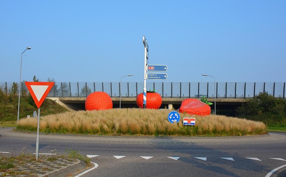 aardbeien bij snelweg