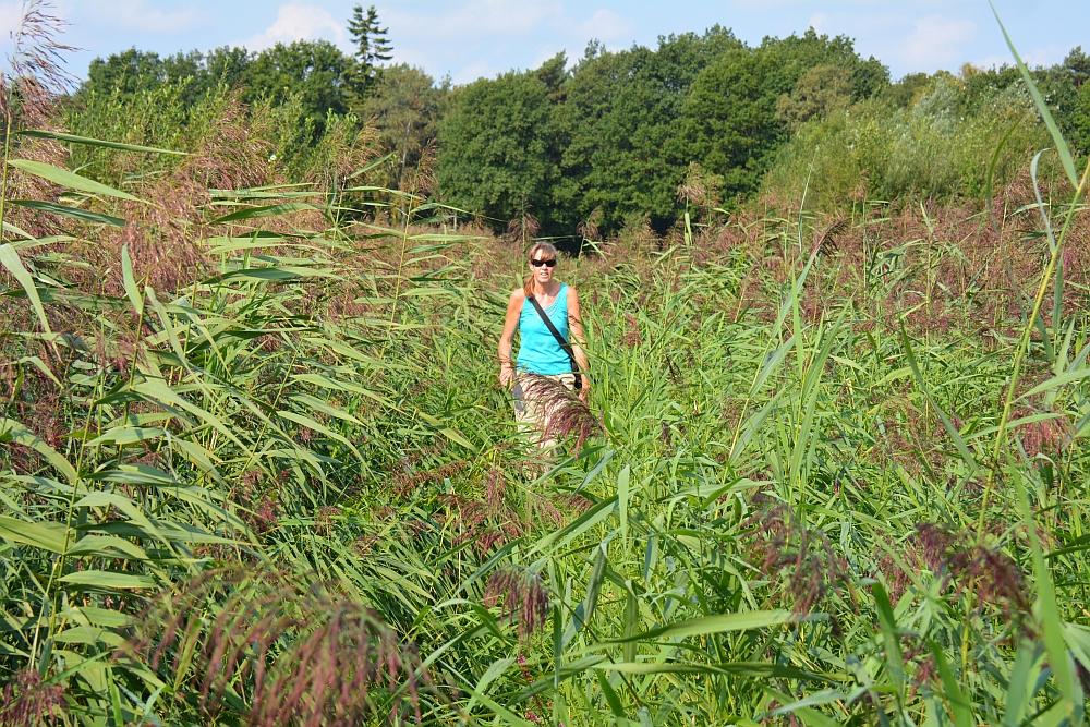 wandelen langs de Kleine Beerze wandelroutes in Brabant