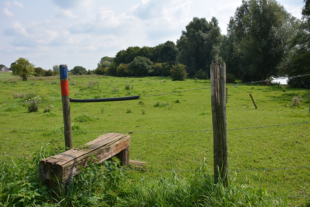 wandelen langs de Maas bij Appeltern