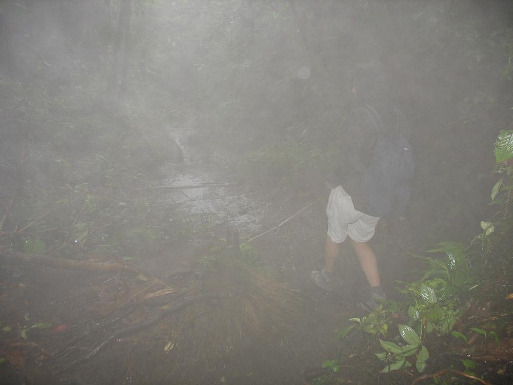 mist Cerro Chato