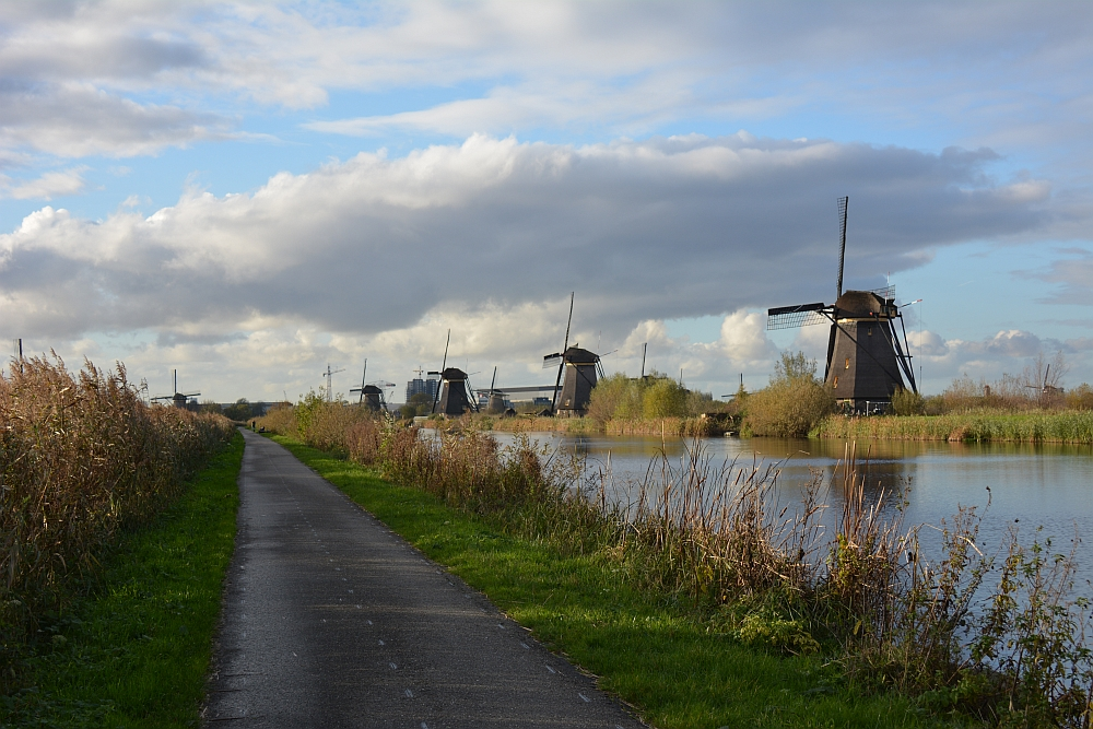Visiting the windmills near Amsterdam at Kinderdijk