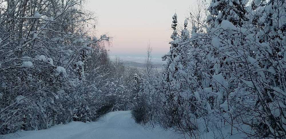skiën in Alaska