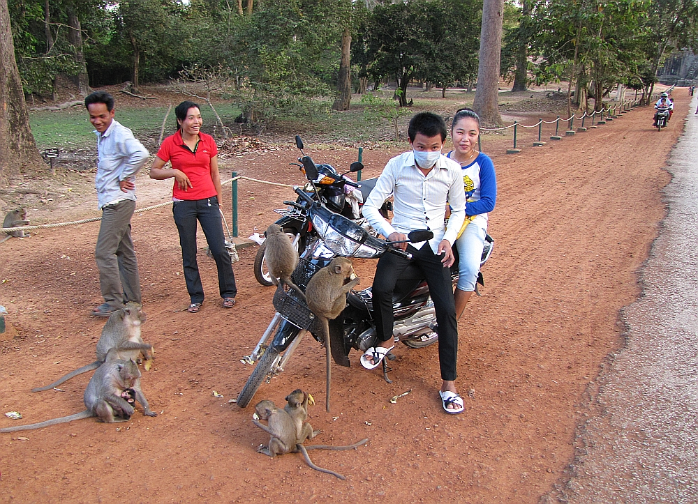 locals meet monkeys at Angkor, Cambodia