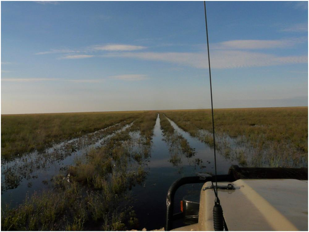 Liuwa Plain National Park safari en wildlife protection
