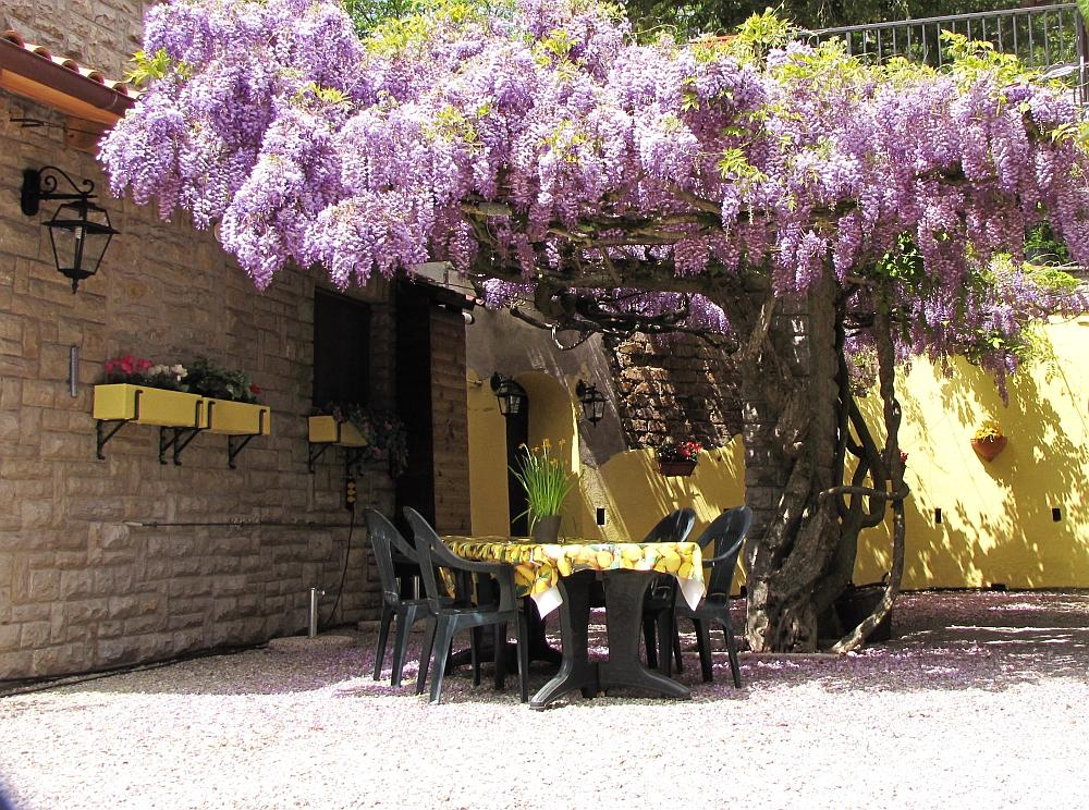 Villa Pellegrino