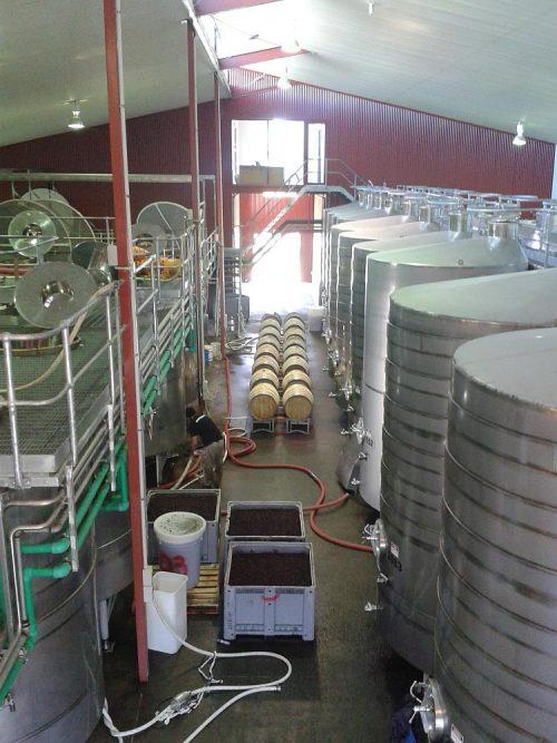 wijnmakerij Nieuw Zeeland