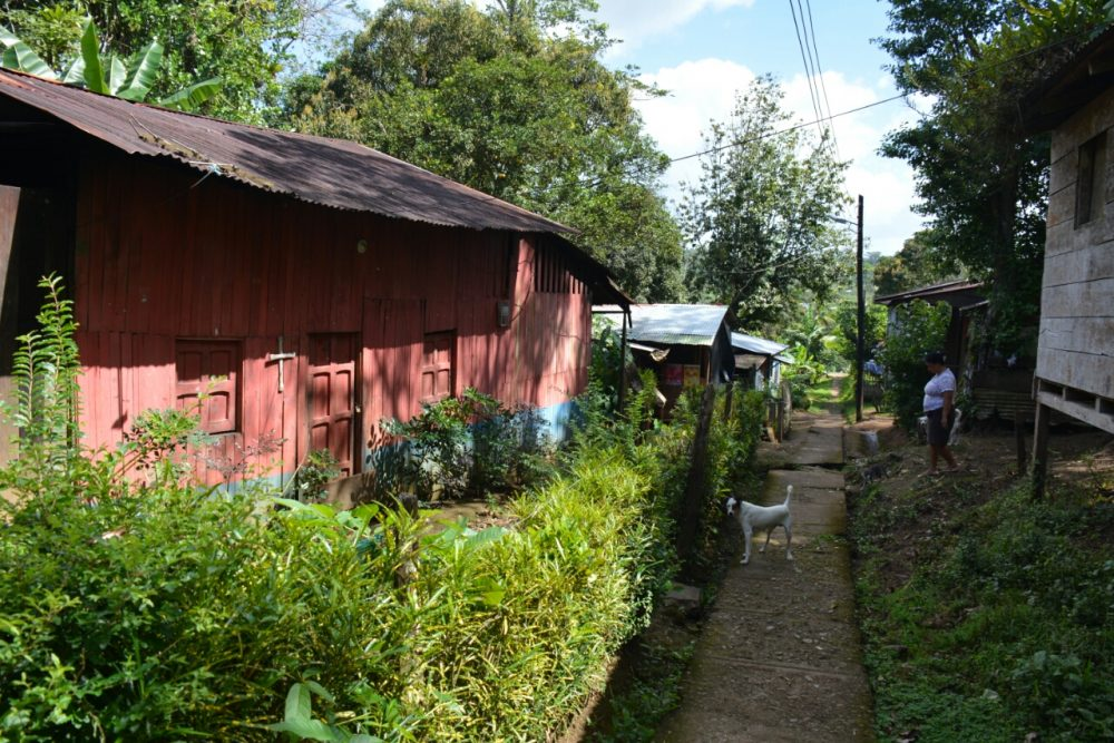 Nicaragua van het gebaande pad El Castillo Rio San Juan