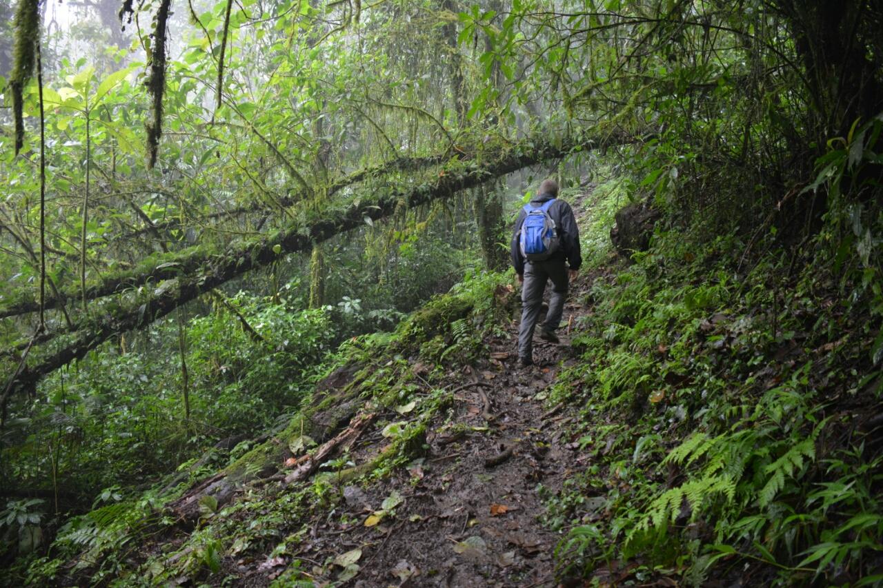 Selva Negra Matagalpa Nicaragua