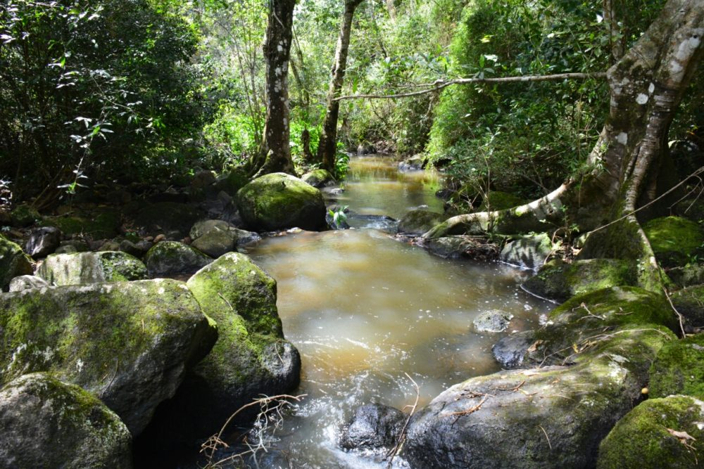 Natural Reserva Apante Matagalpa