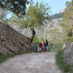 Finca Pública Galatzó Mallorca