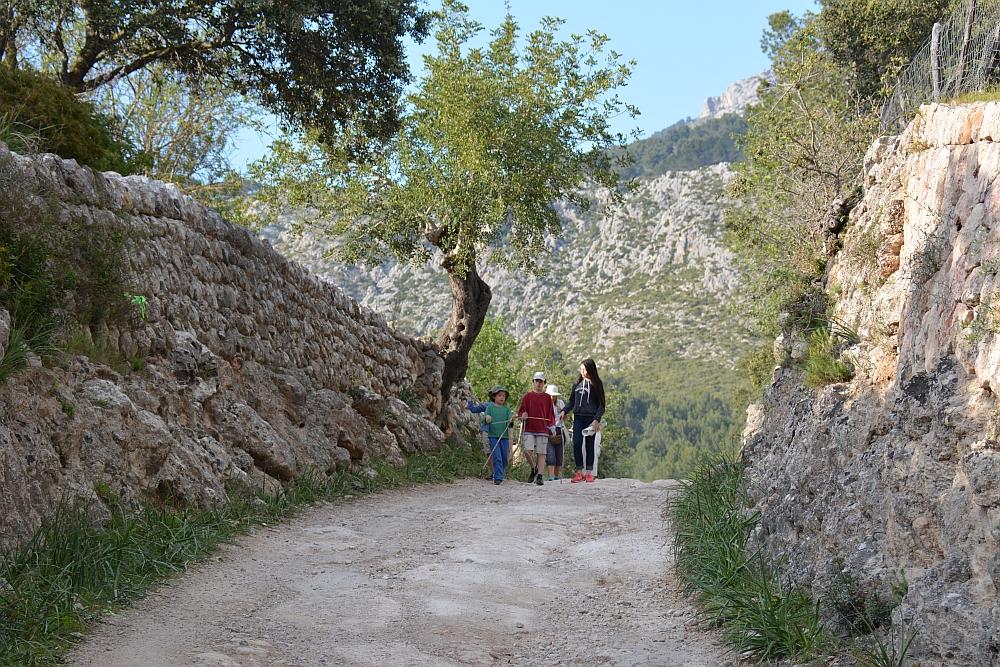 actief op Mallorca Finca Pública Galatzó