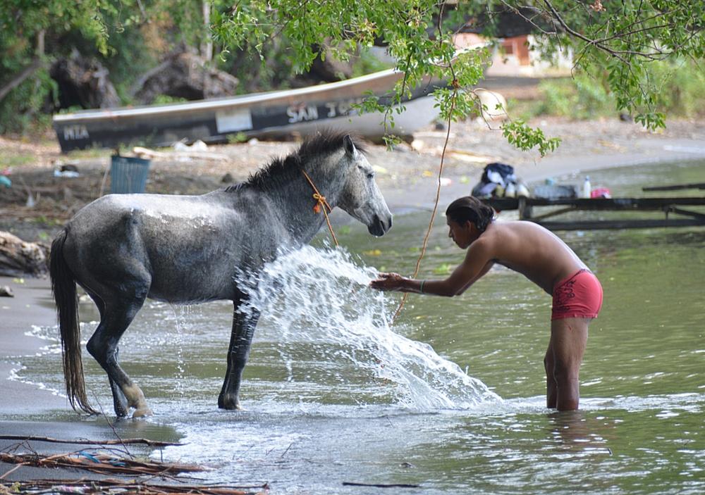 portretten Nicaragua, dagelijks leven in Nicaragua, man wast zijn paard