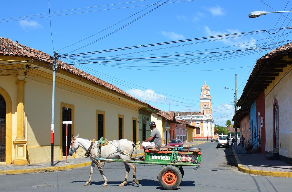 portretten Nicaragua, paardenkar Granada