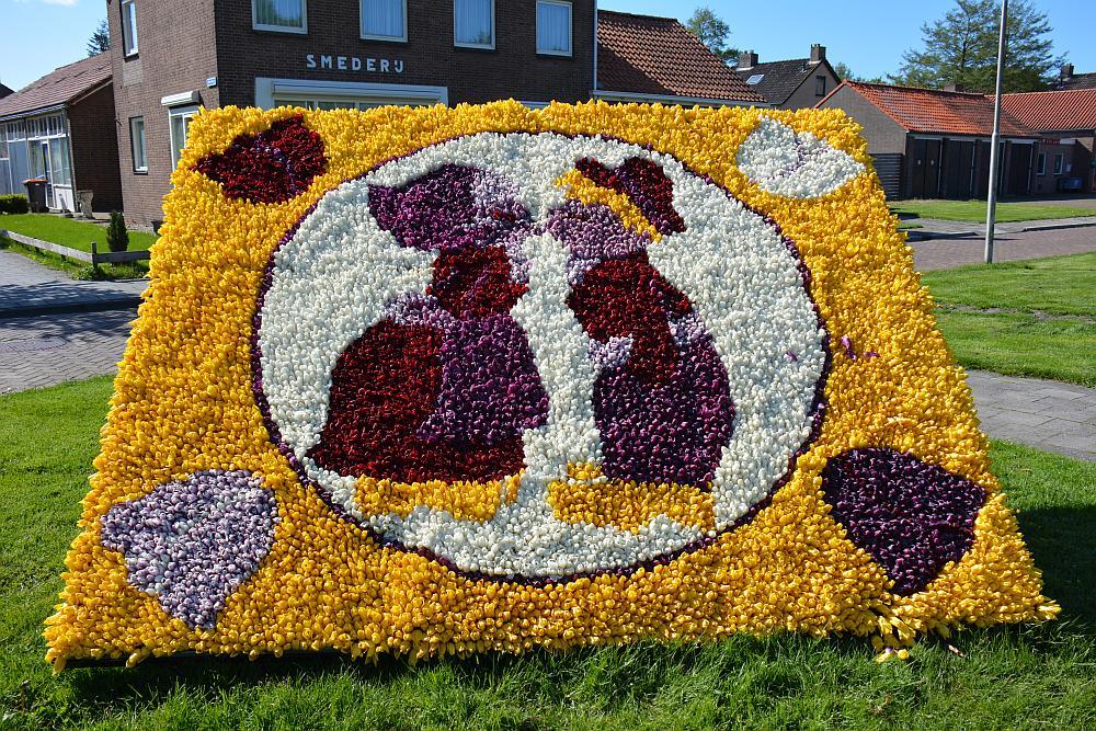 tulpenvelden Noordoostpolder, mozaiek van bloembollen