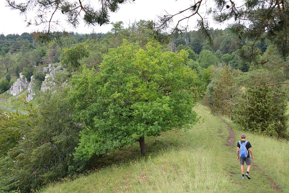 Altmühltal Panoramaweg Zwölf Apostel