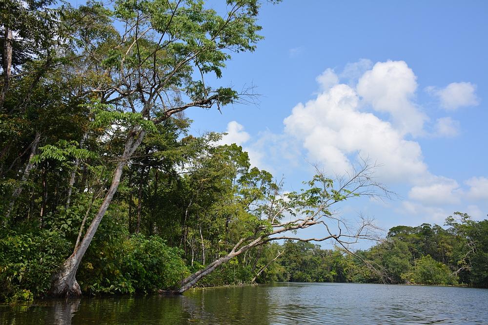 kanovaren Rio Dulce