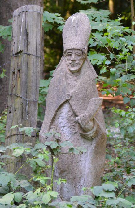 Bos en vennenwandeling bij Goirle klooster van Nieuwkerk
