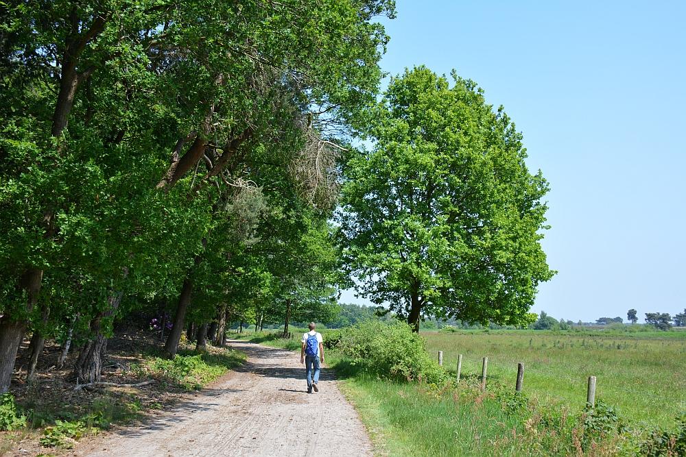 wandeling bij Goirle nieuwe natuur